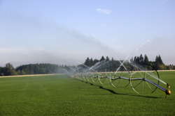 Water Sprinkler System On Farm