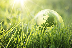 Green Company Symbol In Grass