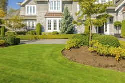Residential Home With Well Kept Yard