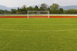Image Of Soccer Field With Goal Marietta