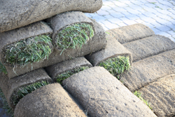 Image Of Stacked Sod Rolled Marietta