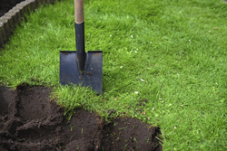 Image Of Shovel In The Yard
