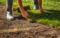 Tips For Laying Fresh Sod in Atlanta
